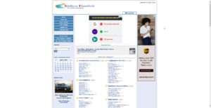 adsriver.com website photo