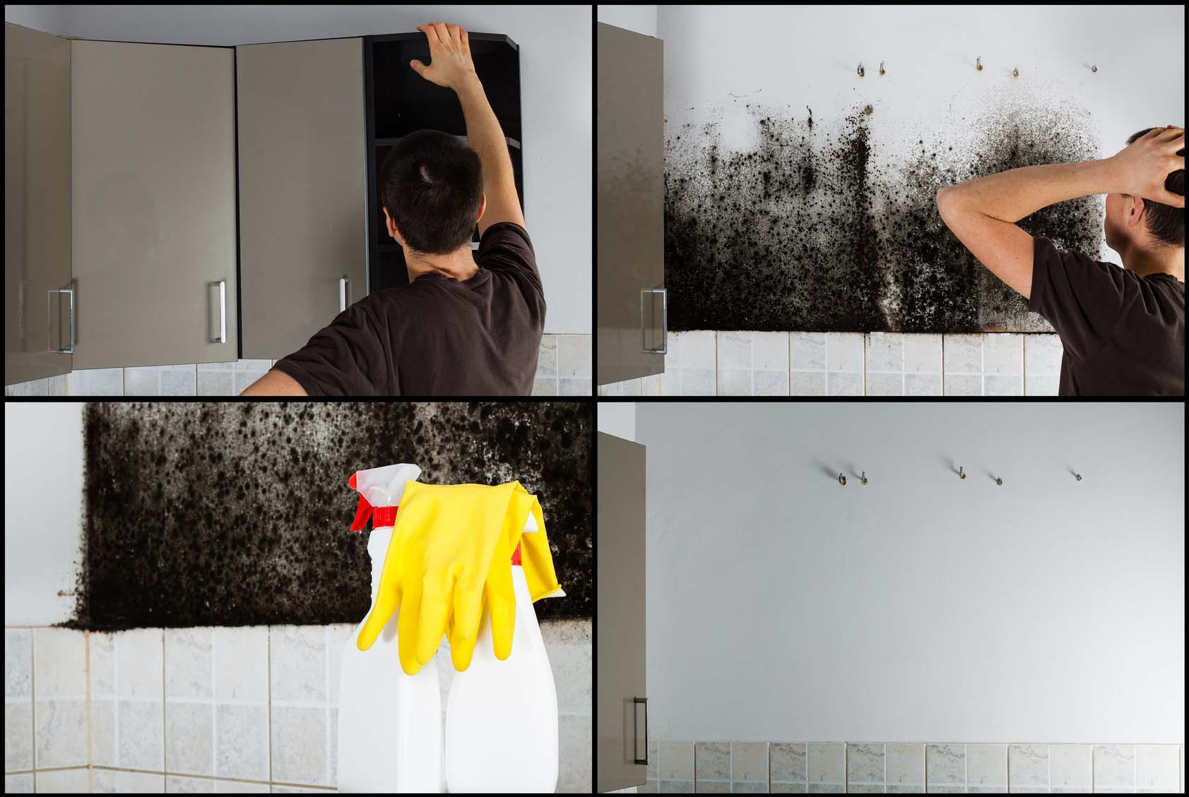 Collage of photos showing a man removing mold from behind the kitchen cabinets.